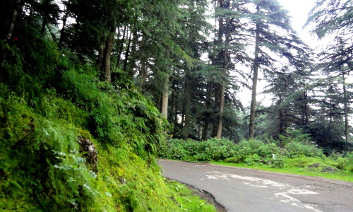 chail-hotel-paragon-attractions